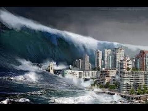 tsunami2011B