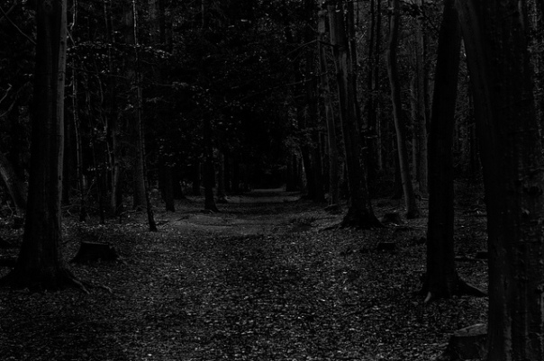 path-dark